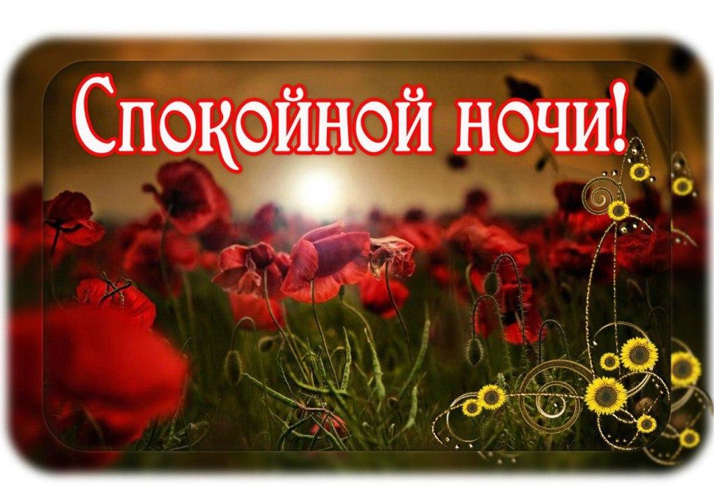 Картинки доброе утро и спокойной ночи любимая