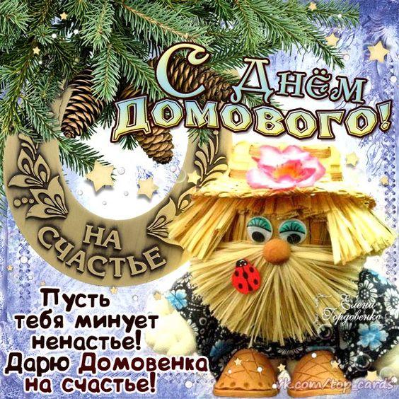 ДЕНЬ ДОМОВОГО 55