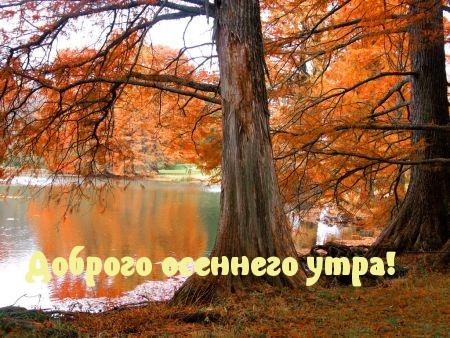 ДОБРЫМ ОСЕННИМ УТРОМ!!!