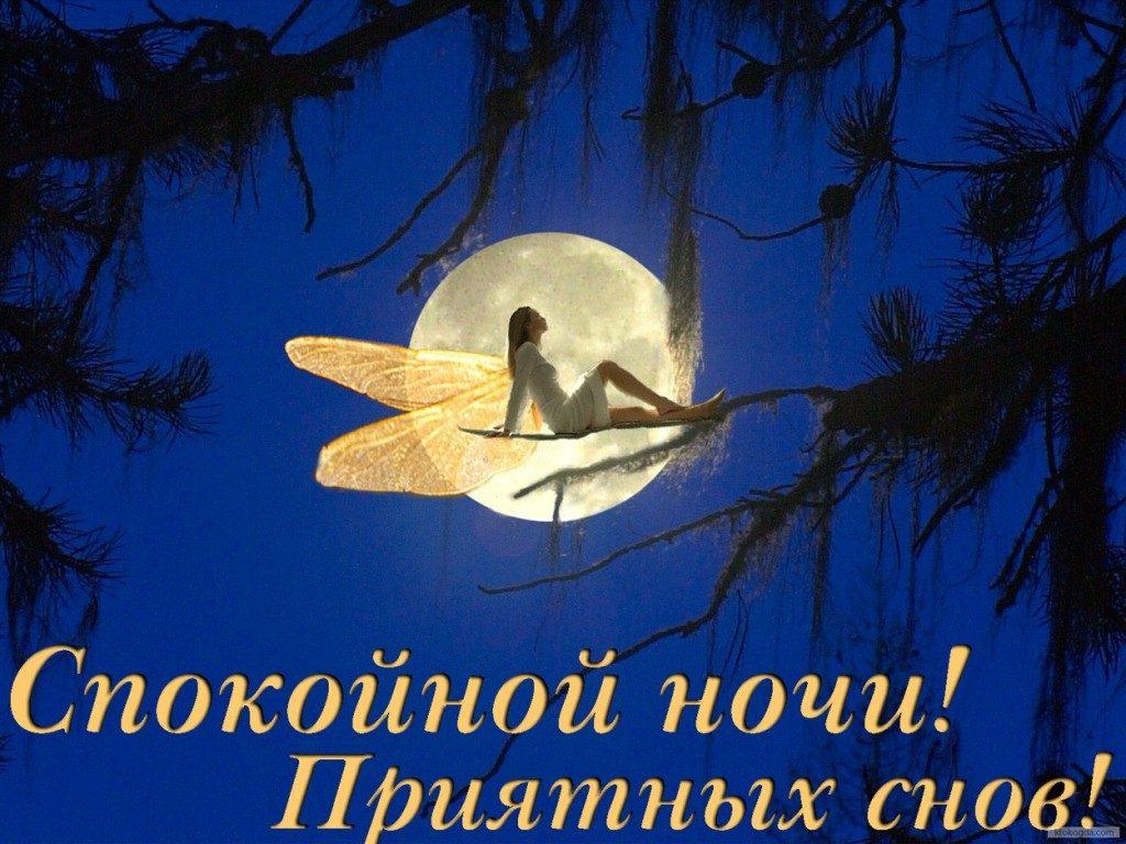 Картинки «спокойной ночи»