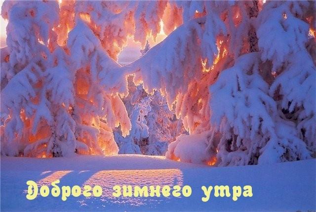 Красивые картинки Доброе зимнее утро! • Прикольные …