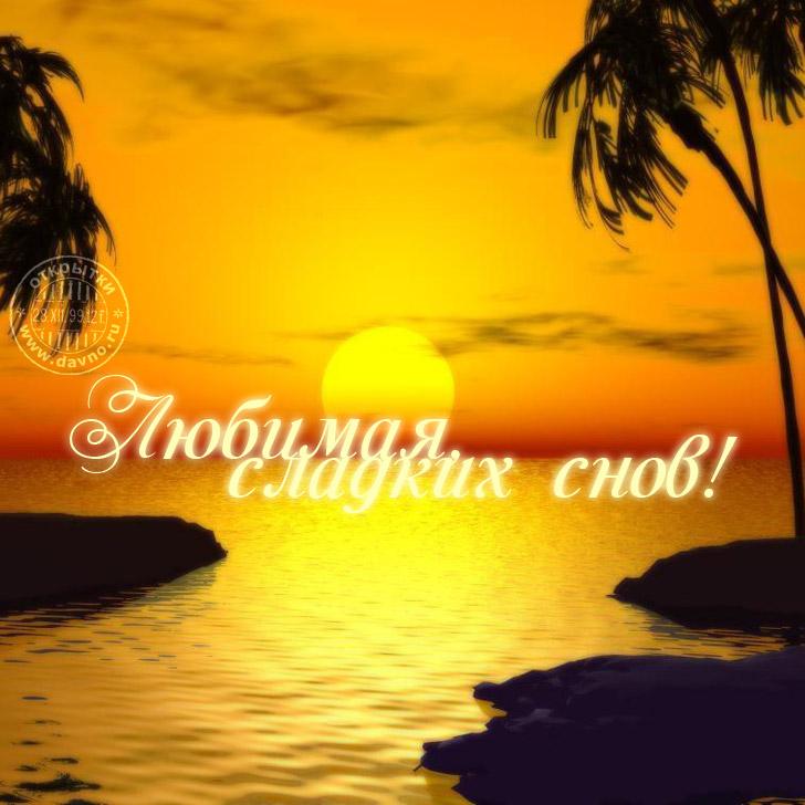 Любимая сладких снов — открытка с пальмами