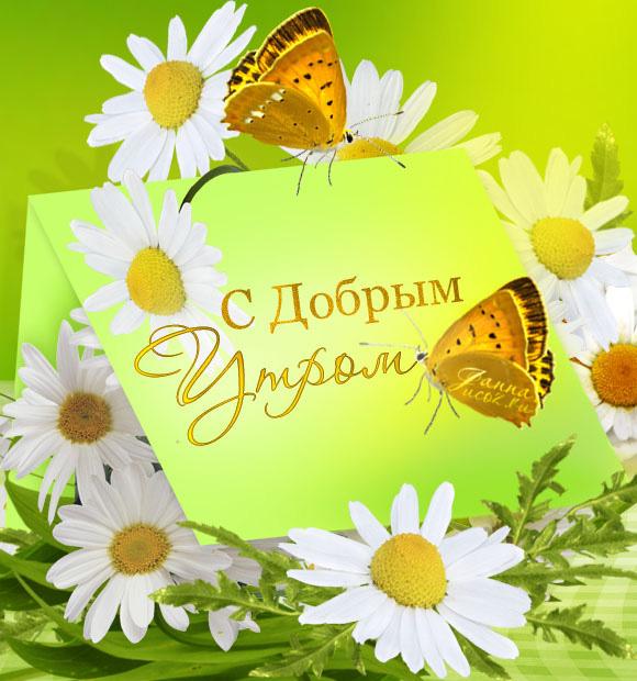 Пожелание С Добрым Утром! ромашки — Летние картинки код