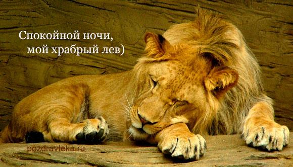 Пожелания спокойной ночи любимому с тигром